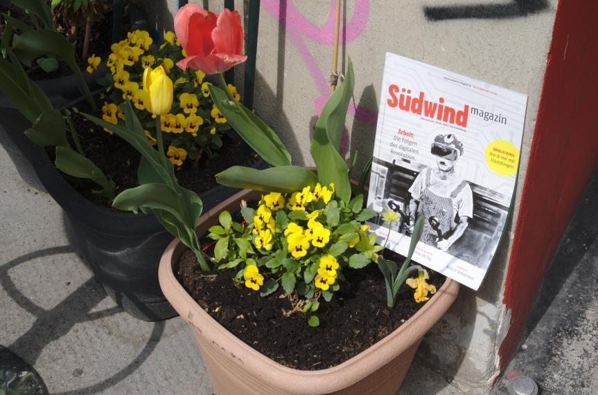 Flash mob und Spaziergang durch die Stadt: wir unterstützen das SüdwindMagazin